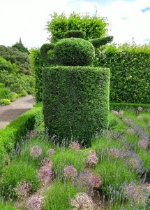 Topiary Teapot After