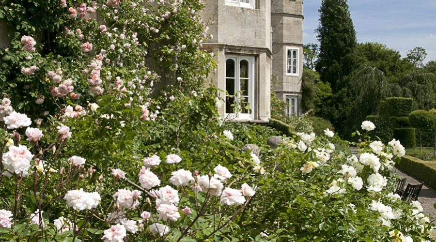 Garden Tour with Supper | Thursday 18th & 25th June 2020