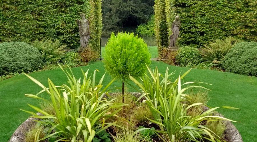 Garden Blog | October